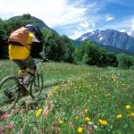 02-Mountainbike